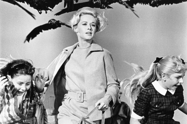 Still from Hitchcock's The Birds