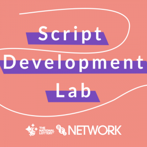 Decorative graphic. The words 'script development lab' are central and highlighted, and the rest of the page has a contrasting background, with a white wiggly line framing the phrase